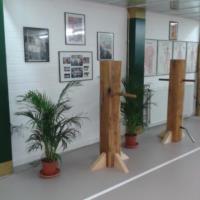 6 - palestra - uomini di legno